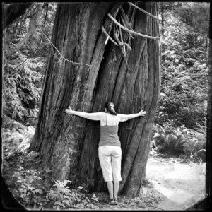 woman, tree